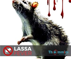 Lassa Fever: The Killer This Time