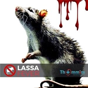 Lassa Fever: The Killer This Time